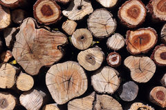Natural wooden logs background Royalty Free Stock Photos