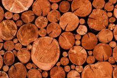 Natural wooden logs cut and stacked in pile, felled by the logging timber industry, Stock Photo