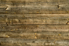 Natural wooden plank Stock Image