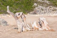 Natural wooden sculpture Stock Photos