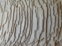 Natural wooden surface Royalty Free Stock Photos