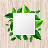 Natural wooden texture background and square green leaf frame wi. Th place for text. Vector spring and summer illustration Royalty Free Stock Photos