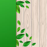 Natural wooden texture, fresh leaves and green background with p Royalty Free Stock Images