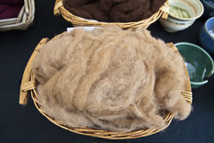 Natural wool fleece. Stock Photo