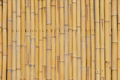 Natural yellow bamboo vertical bodies background Royalty Free Stock Photo
