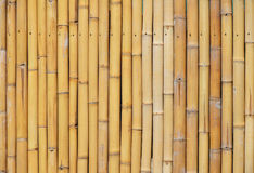 Natural yellow bamboo vertical bodies background Stock Image