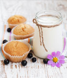 Natural yoghurt with fresh blackcurrants Stock Photos