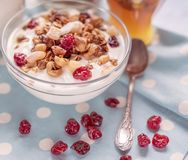 Natural yoghurt with granola nuts and dried fruits. Natural healthy food stock photos