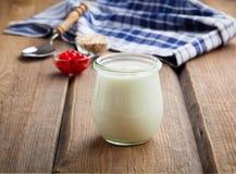 Natural yoghurt Royalty Free Stock Photo