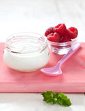 Natural yogurt Stock Images