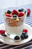 Natural yogurt with berries Royalty Free Stock Images