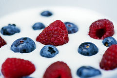Natural yogurt with blueberries and raspberries Royalty Free Stock Photography