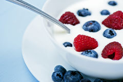 Natural yogurt with blueberries and raspberries Royalty Free Stock Images