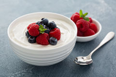 Natural yogurt in a bowl with berries Royalty Free Stock Images