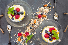 Natural yogurt with fresh berries and muesli, cereal, top view,. Horizontal composition Royalty Free Stock Photos