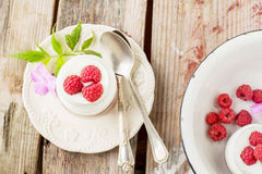 Natural yogurt with fresh raspberries Royalty Free Stock Photography