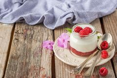 Natural yogurt with fresh raspberries and. Raspberry jam for breakfast in portion jars on a wooden background. selective Focus Royalty Free Stock Photo