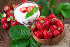 Natural Yogurt with fresh Strawberries Royalty Free Stock Photography