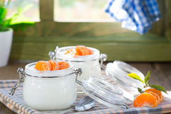 Natural yogurt of mandarins Royalty Free Stock Photo