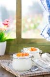 Natural yogurt of mandarins Royalty Free Stock Photography