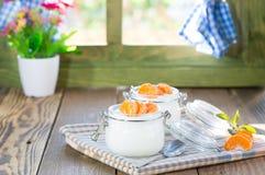 Natural yogurt of mandarins Royalty Free Stock Image