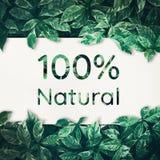 100% naturale con la foglia verde amichevole, ambiente di eco, concetti Fotografie Stock Libere da Diritti