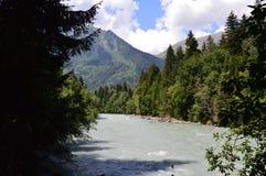 Naturaleza Imagen de archivo