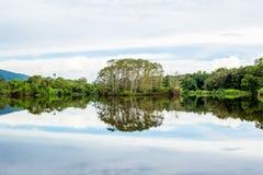 Naturaleza abstracta, reflexión de árboles en el lago Fotos de archivo