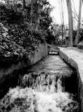 Naturaleza, agua y blanco y negro Fotos de archivo libres de regalías