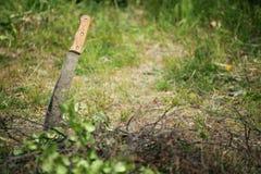 Naturaleza al aire libre del machete Fotos de archivo