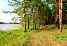 Naturaleza Altaya imagen de archivo
