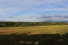 Naturaleza búlgara - un cielo azul con las pequeños nubes, árboles y campos imagen de archivo