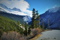Naturaleza canadiense - Columbia Británica Imagen de archivo