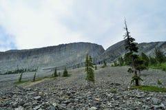 Naturaleza canadiense - rocas de Kananaskis Imagen de archivo libre de regalías