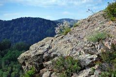 Naturaleza de Altai Imágenes de archivo libres de regalías
