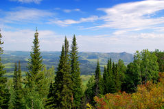 Naturaleza de Altai Foto de archivo libre de regalías
