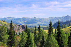 Naturaleza de Altai Fotografía de archivo libre de regalías