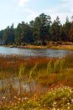 Naturaleza de Finlandia Foto de archivo libre de regalías