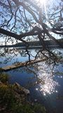 Naturaleza de Finlandia Foto de archivo