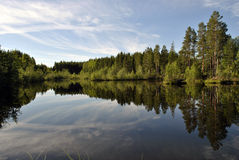 Naturaleza de Karelia Fotografía de archivo libre de regalías