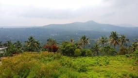 Naturaleza de Kerala fotos de archivo