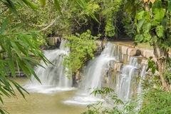 Naturaleza de la cascada y alrededor del árbol verde Foto de archivo libre de regalías
