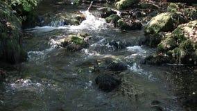Naturaleza de la corriente de la montaña metrajes