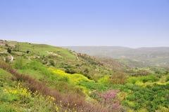 Naturaleza de la montaña de Chipre Imagenes de archivo