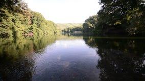 Naturaleza de la salida del sol en el lago almacen de video