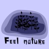 Naturaleza de la sensación Imagen de archivo libre de regalías