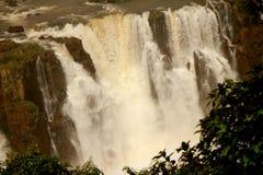 Naturaleza de las cataratas del Iguazú Imagen de archivo libre de regalías
