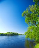 Naturaleza de los ríos Foto de archivo libre de regalías