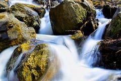 Naturaleza de SAJALÍN de la cascada de domingo del río imagenes de archivo