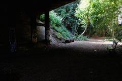 Naturaleza de Sentier Foto de archivo libre de regalías